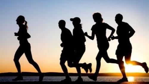 Suporte nos treinos